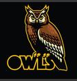 owl bird mascot vector image vector image