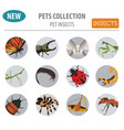 pet insects breeds icon set flat style isolated vector image vector image