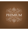 Premium Vintage elements and page decoration vector image vector image