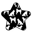 star tag japanese dog calendar pattern vector image