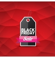 Black Friday sale poster or banner vector image vector image
