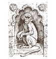 cute monkey or vintage primate hand drawn vector image vector image