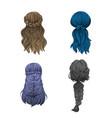 girls hair vector image