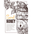 sweet honey hand drawn poster template vector image vector image