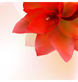 Abstract Red Tulip With Blur vector image vector image