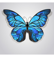 Blue Butterfly Morpho vector image vector image