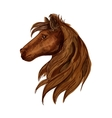 Brown horse head sketch portrait vector image vector image
