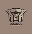 head bulldog logo design vector image vector image
