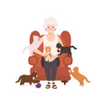 old happy lady or grandmother sitting in comfy vector image
