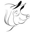 pig head line art vector image