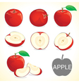 Set of apple fruit in various styles vector image