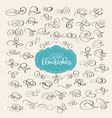 Set of flourish swirl ornate decoration for