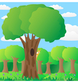 The squirrel on a tree in the forest vector image vector image
