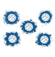 volleyball sport game balls sporting equipment vector image