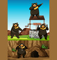 wild bears group in many poses in animal park vector image vector image
