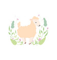 adorable little lamb cute sheep animal standing vector image vector image