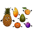 Cartoon fresh fruits set vector image vector image