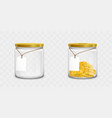 clear money box vector image