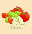 cucumbers and tomatoes vector image vector image