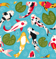 koi fish pattern oriental koi colorful floating vector image