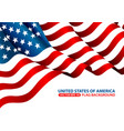 united state america flag background vector image vector image