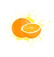yummy oranges vector image vector image