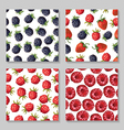 berry pattern set2 vector image