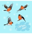 Bullfinches in flight on a blue background vector image vector image