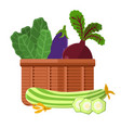 harvest in basket collection vector image