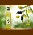 olives with leaves on a branch vector image vector image
