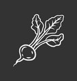 radish chalk icon vector image vector image