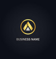 triangle shape gold logo vector image vector image