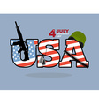 USA Veterans Day Automatic and soldiers helmet vector image vector image