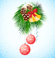 Branch of Christmas tree vector image