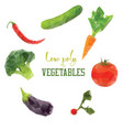 carrot broccoli pepper tomato diet vegan low vector image vector image