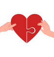 connected hearts find love hands holding half vector image