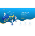 isometric dna helix dna analysing concept vector image vector image