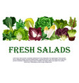poster of fresh salads leafy vegetables vector image vector image