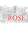 rose word cloud concept vector image vector image