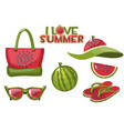 set beach objects from watermelon and summer vector image vector image