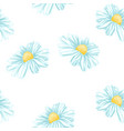 chamomile or daisy seamless pattern vector image