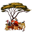 isolated picture many animals under tree vector image vector image