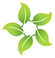 leafs around icon united logo vector image