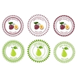 Logo plum and pear vector image vector image