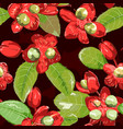 red flower on seamless background vector image vector image