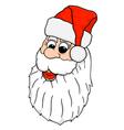 Santa Face vector image