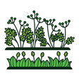 green grass and flower plants icons vector image
