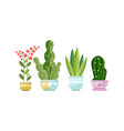 green growing potted houseplants set home or vector image vector image