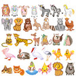 set cartoon animals with cow sheep goat lion vector image vector image
