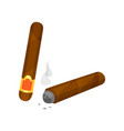 whole and burning brown cigar with smoke smoking vector image